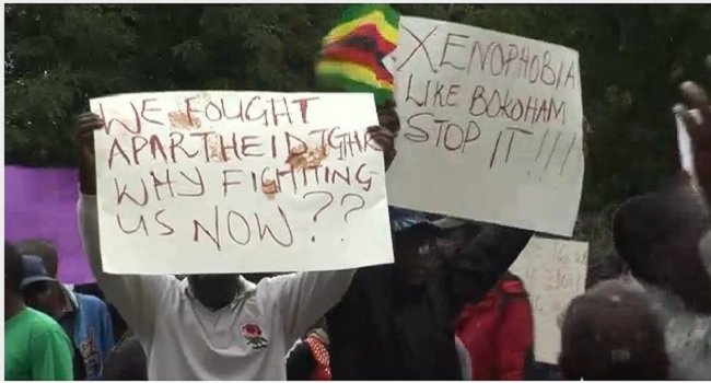 My govt probing xenophobic attacks on Nigeria – SA Envoy