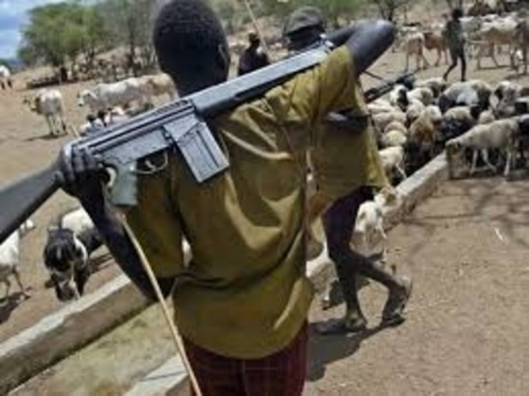 Delta communities lament taking of farmlands, killings, raping by Fulani herdsmen