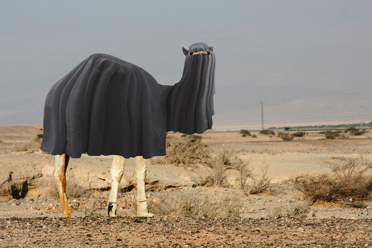 New ISIS rules require female animals to wear burka
