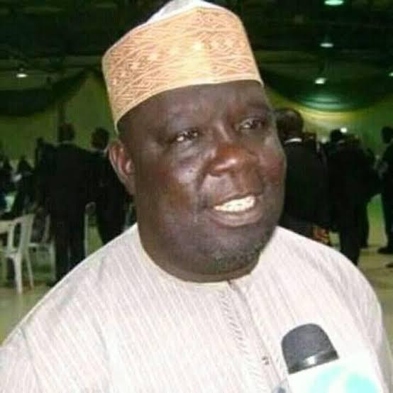 Terrorists kill senator Bala Na'allah's son, two others in Kaduna