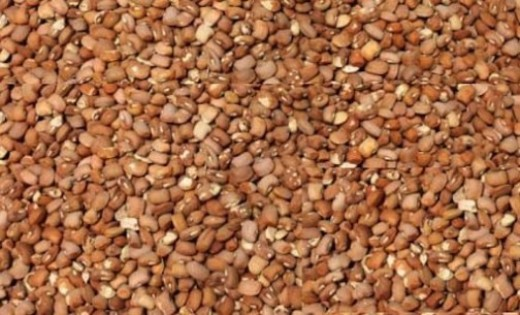 CPC warns Nigerians of poisoned beans in circulation
