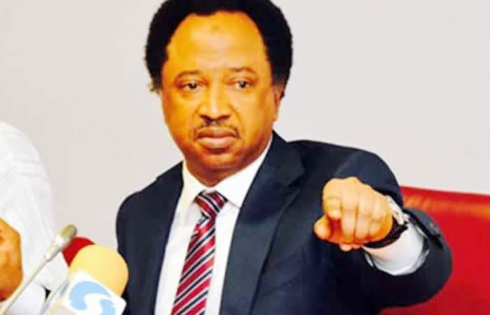 Senator Shehu Sani dumps APC for PDP
