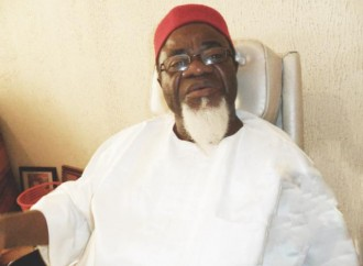 Security agencies carrying out genocide in South-East – Igbo elders