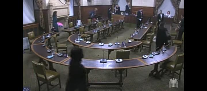 #EndSARS: UK legislators propose sanctions against Nigerian leaders involved in Lekki shooting