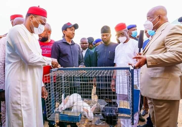 Uzodinma empowers Imo people with rabbits