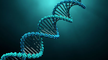 DNA testing should be done by both men and women – Genetics experts