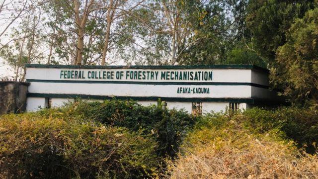 29 abducted Afaka University students regain freedom