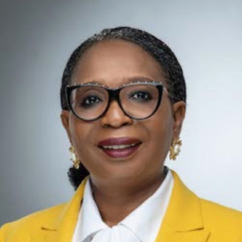 Ibukun Awosika gets her groove back, nabs UK's G7 impact taskforce appointment with Aruma Oteh